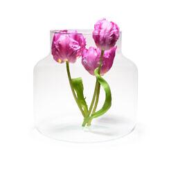 PIVELLO® Glasvase Handgefertigt Glaszylinder Zylinder Glas Hochzeit Deko Ø19cm